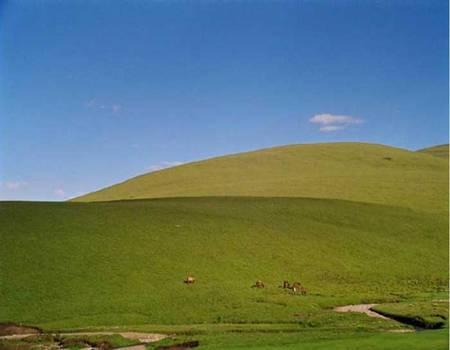 同德4个县及海西蒙古族藏族自治州格尔木图片